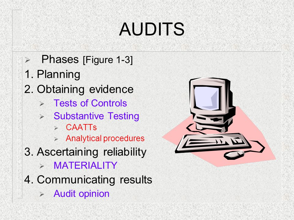 AUDITS Phases [Figure 1-3] 1. Planning 2. Obtaining evidence